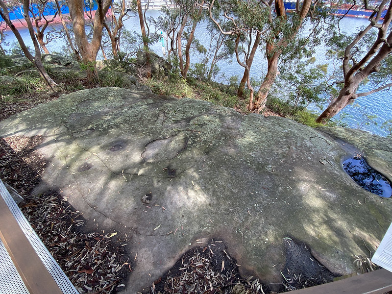 Cammeraygal rock carving