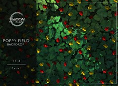 Poppy Field Backdrop @ FREE GIFT at Mainstore