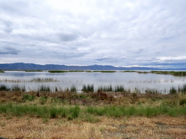 Wetlands by Layers