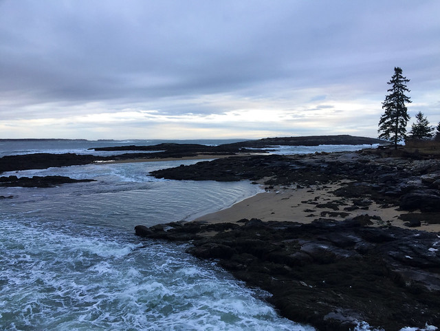 Atlantic Coast - in Coastal Maine
