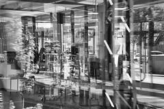 SW Spiegelungen Zeitung Shop.