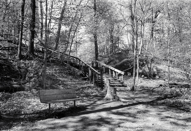 The Stairs Back Up from the Bronte Creek Valleytif