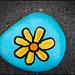 Kanata Rocks - Blue Flower Rock