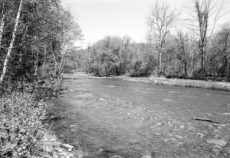 Bronte Creek Two