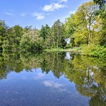 Haslam Park lake reflections