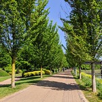 Path at Miller Park, Preston