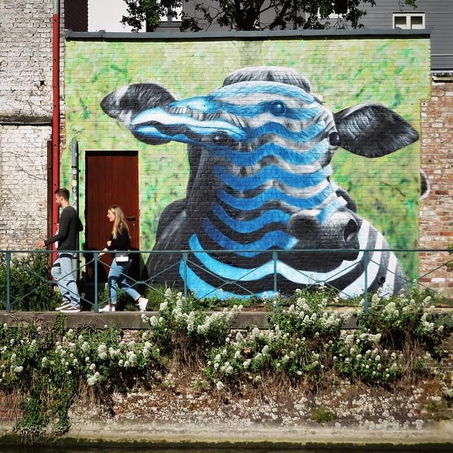 #Ghent update on #StreetArtCities app & map : more from this new hotspot, with this #mural by #CeePil. . #Gent #streetart #urbanart #graffitiart #artinthestreets #streetartbelgium #graffitibelgium #visitgent #muralart #streetartlovers #graffitiart_daily #