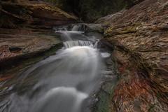Cattai Creek