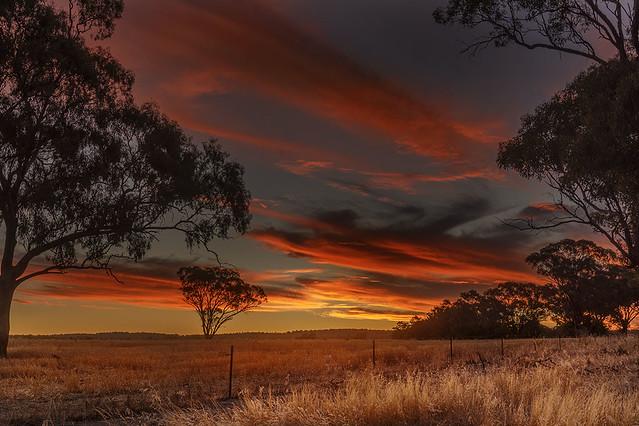 Temora sunset
