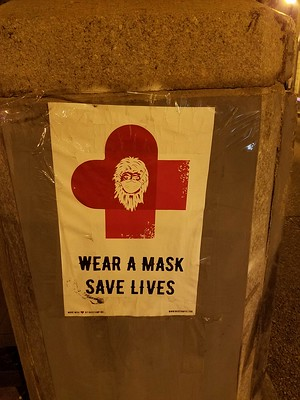 Wear a Mask. Save Lives.