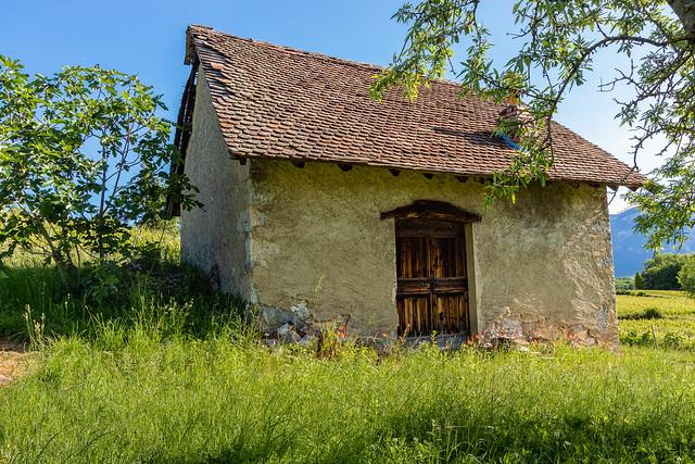 Au coeur de la nature.... (Savoie 05/2020)