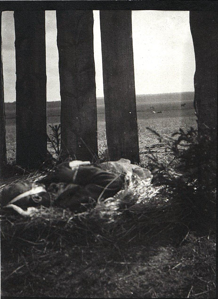 17. Беженец-политехник, погибший от немецкой бомбы. 1915