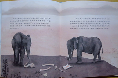 20200526-大象4 拷貝
