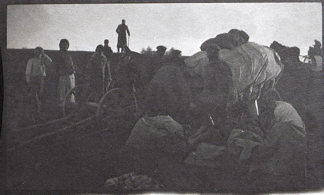 19. Катастрофа от автомобиля. 1915