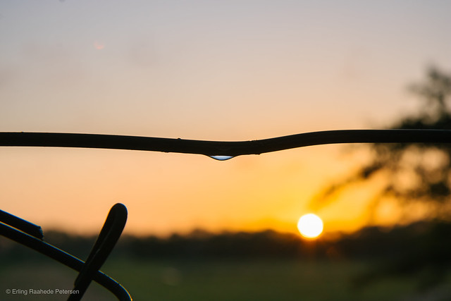 The little drop and the sunset