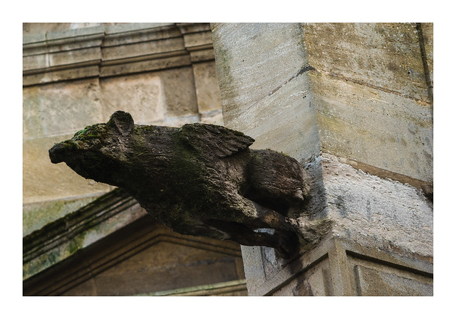 Les gargouilles de la cathédrale Notre-Dame du Havre 10: le griffon vert