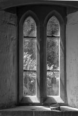 Windowsill Bible 2 mono