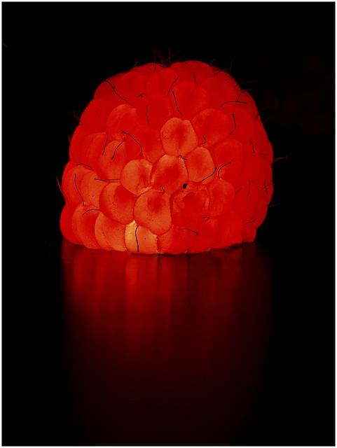 the raspberry experiment - das Himbeer-Experiment