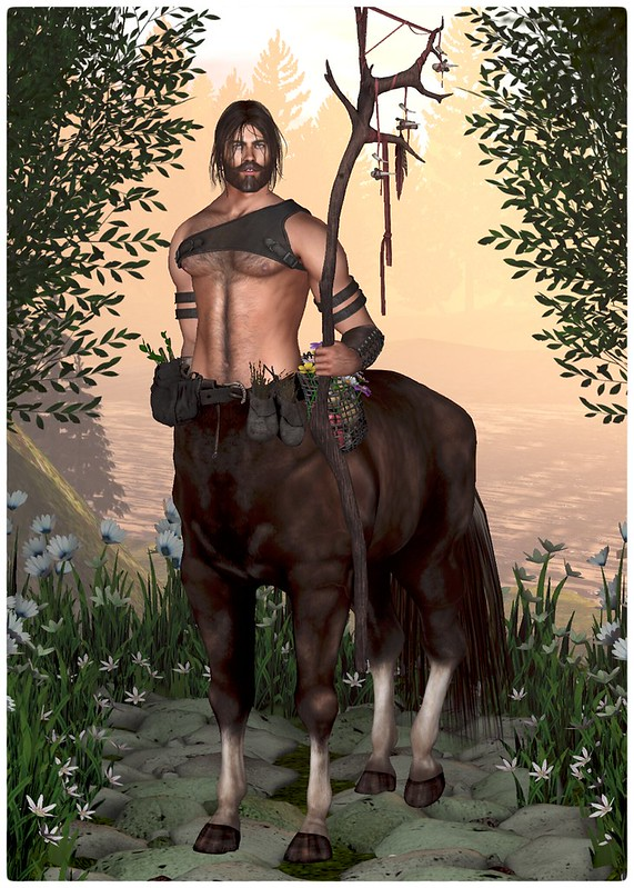The Great Centaur Gallery - Tomais Ashdene