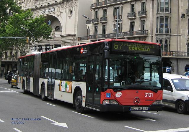TMB 3101