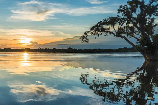 Cuyabeno sunset Laguna Grande (explored)