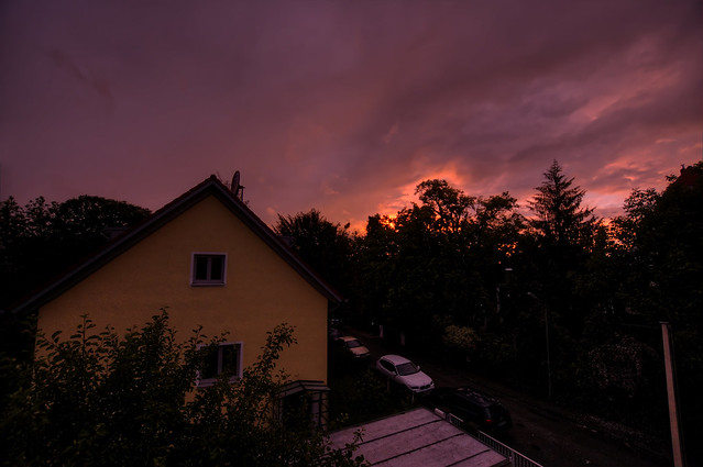 Yesterday evening, when I looked out of the window