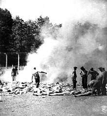 220px-Auschwitz_Resistance_280_cropped