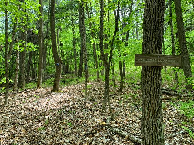 1:08:25 (70%): hiking vermont billballardtrail norwich unitedstatesofamerica