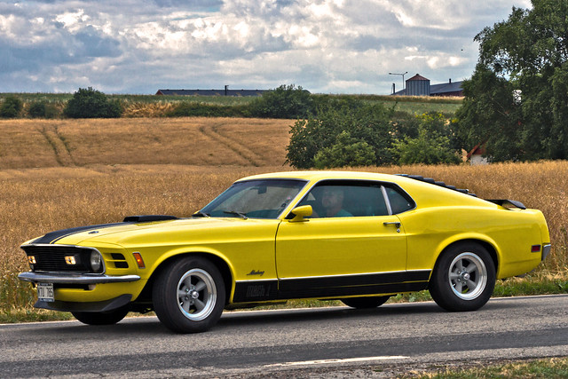 Ford Mustang Mach 1 1970 (8288)