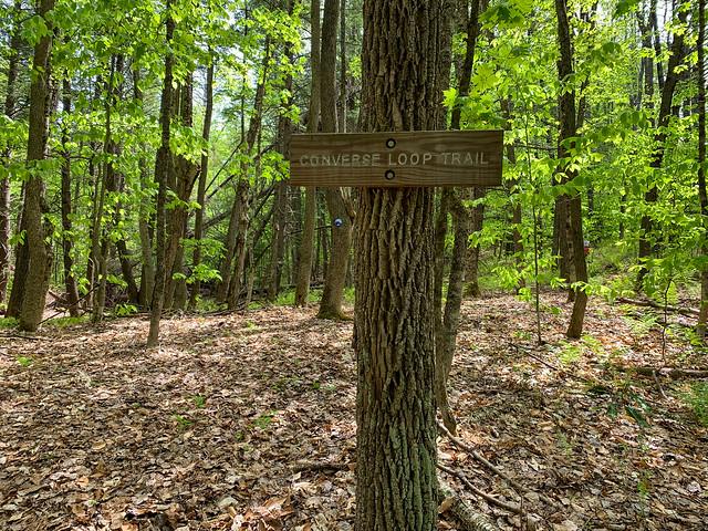 0:12:01 (12%): hiking vermont billballardtrail norwich unitedstatesofamerica