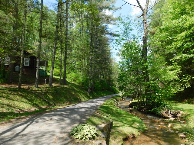 The Healing Springs and Cabin