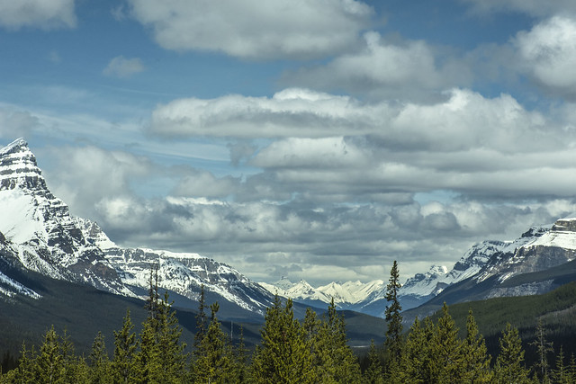 A Sunday drive along Abraham Lake to Nordegg, Alberta