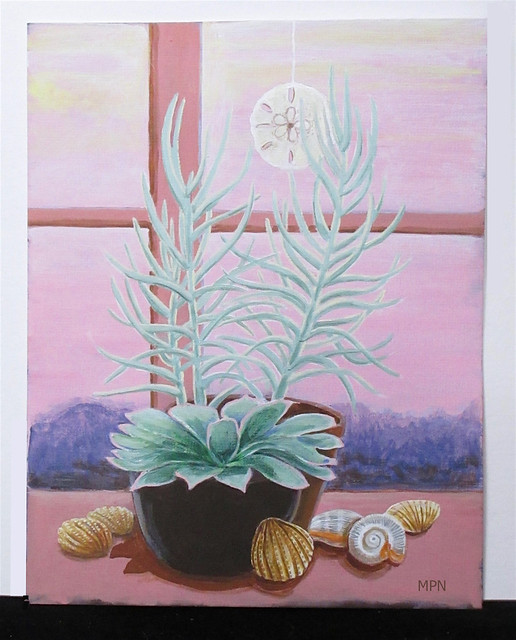 Shells & Succulents