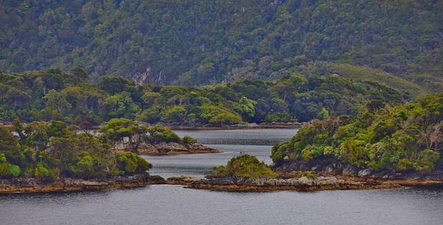 Dusky Sound, Fiordland National Park, South Island, New Zealand