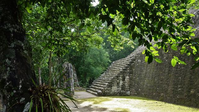 MEXICO, Mayastätte Calakmul, inmitten eines unendlich scheinenden Dschungels. verborgen, versteckt im tiefen Urwald ,  Abschied , 19769