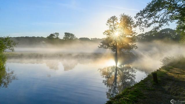Dawn in Ripley