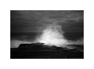 breaking wave, Sydney 2015  #979