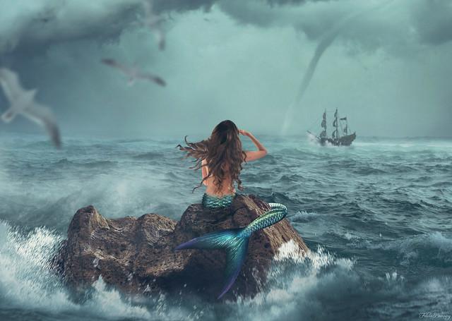 A Storm Coming