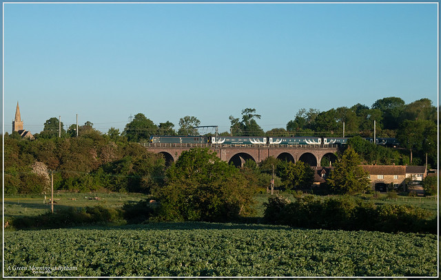 A Green Morning at Bytham