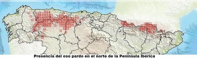 Mapa de distribución del oso pardo ibérico en el norte de España (Cantábrico y Pirineos)