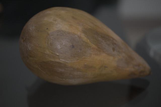 Canistel - Pouteria campechiana