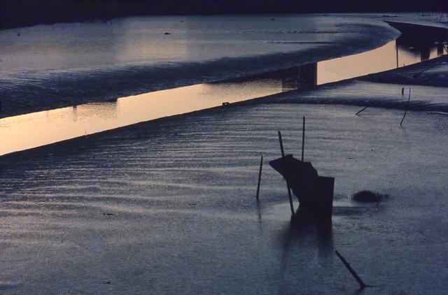 Humber Dock Basin, Hull 70shull052