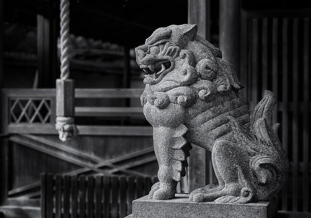 Komainu (狛犬) shrine guardian