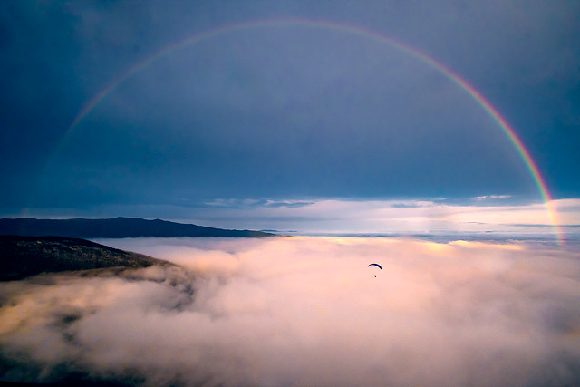 Under the rainbow with Michael Regnier