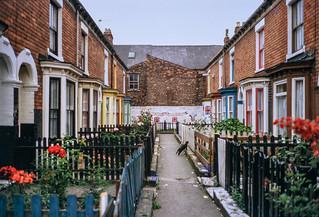 Terrace, Hull 81-Hull-003