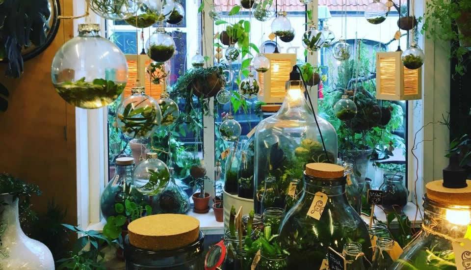 Foto met dank aan PLANTaardig   Mooistestedentrips.nl