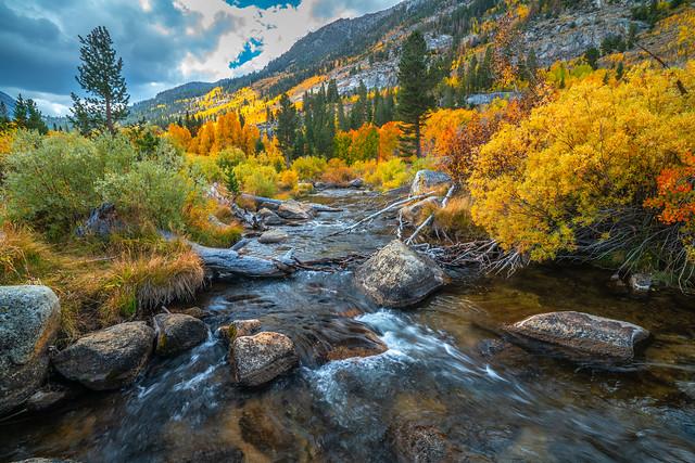 High Sierra Bishop Creek South Fork Fall Foliage Fine Art Landscape Nature Photography! Eastern Sierras Peak Fall Colors Aspens Red Orange Yellow Leaves! Elliot McGucken Sony a7r2 & Sony FE E-Mount Lens 16-35mm Carl Zeiss F4 Wide Angle!