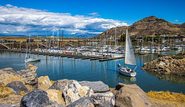 Fun Day to Sail IMG_8893