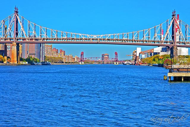 Queensboro & Roosevelt Island Bridges seen from Gantry Plaza State Park Long Island City Queens New York City NY P00538 DSC_2331