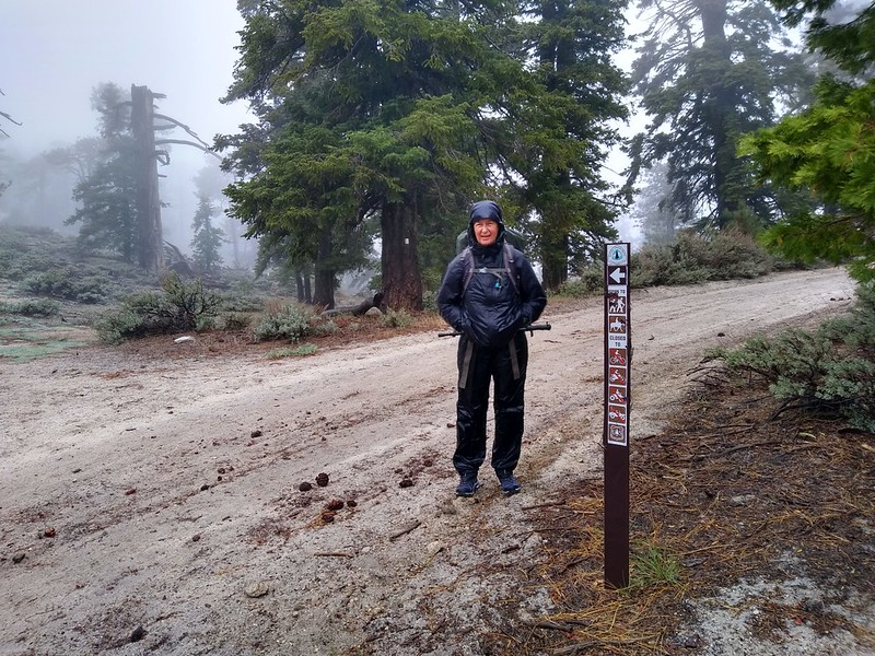 The PCT intersected Pacifico Mountain Road, and since we were getting cold we decided to take the road down